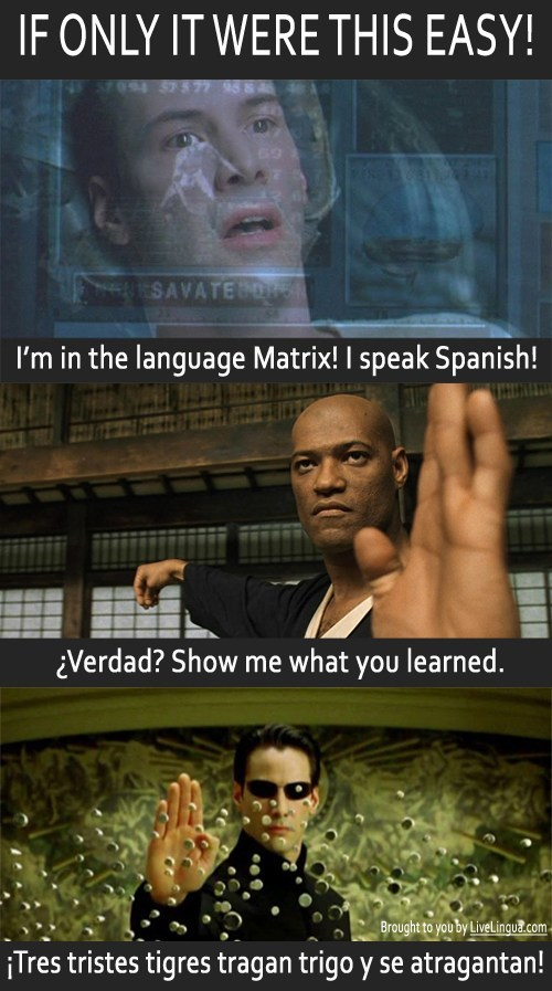 If only language learning were this easy