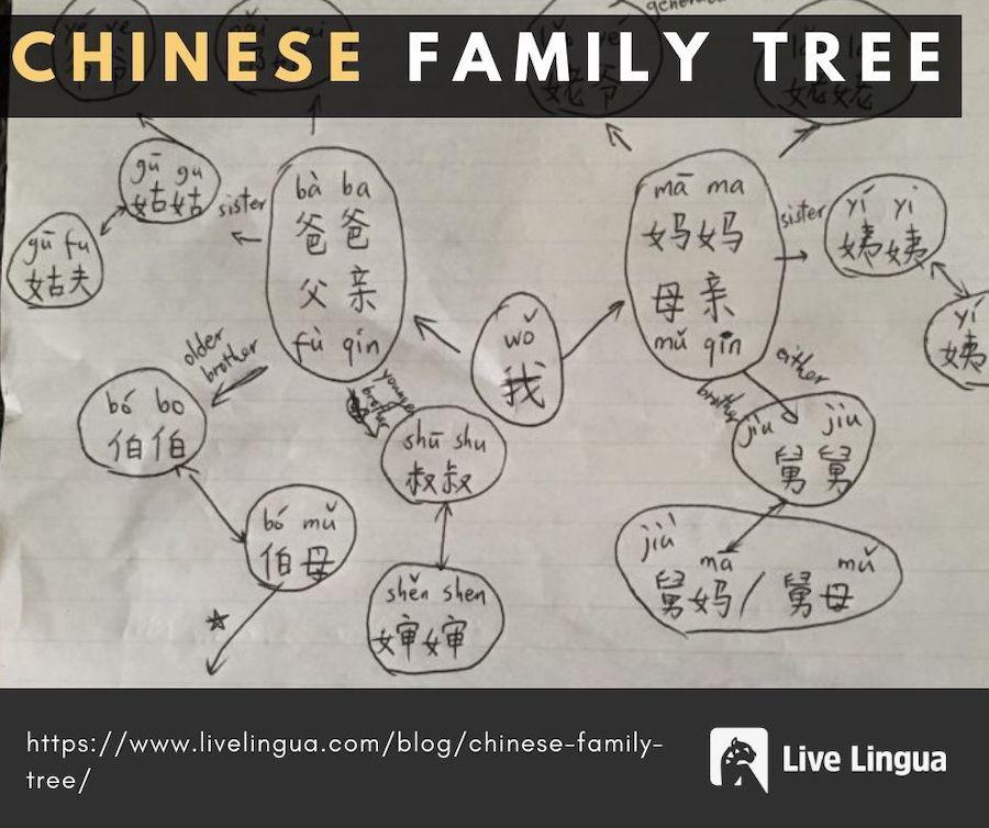chinese family tree