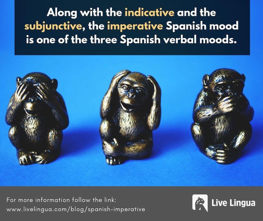 imperative spanish
