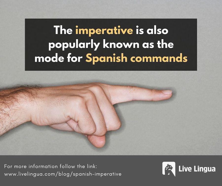 mandatos spanish