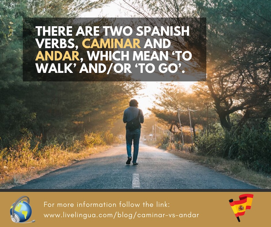 how to say walk in spanish