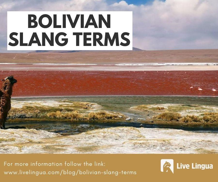 bolivian slang terms